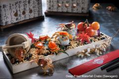 Deep-Fried-Waterfall-Crabs-Sawagani