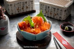 Salmon-Ikura-Don